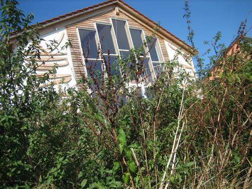 Südfassade der Werkstatt vor dem Mähen